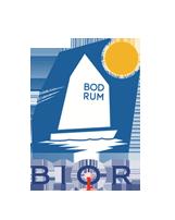 BIOR 2016 logo